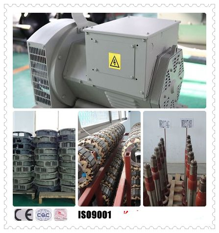 Magnetic Brushless Alternator ,  AC Single Phase Diesel Generator 25KW 60HZ