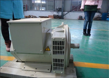 Chiny 80kw 80kva Effeciency Single Phase AC Generator Self Excited Alternator dystrybutor